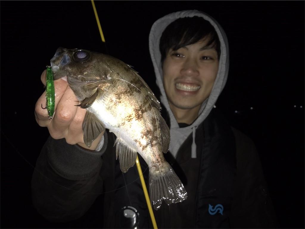 プラグでメバル釣り